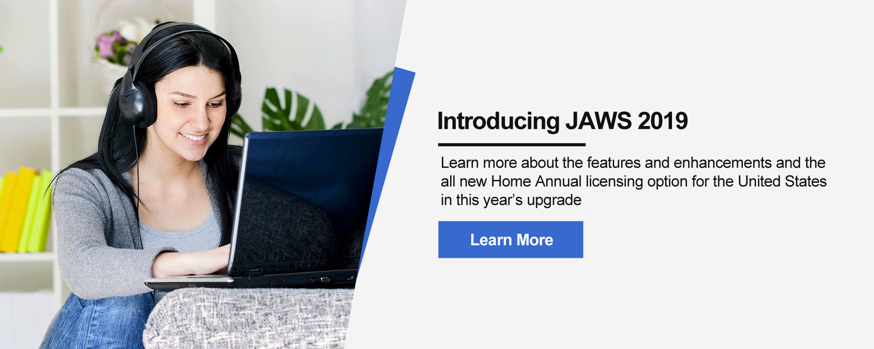 Introducing JAWS 2019. Learn more about the features and enhancements and the all new Home Annual licensing option for the United States in this year's upgrade.