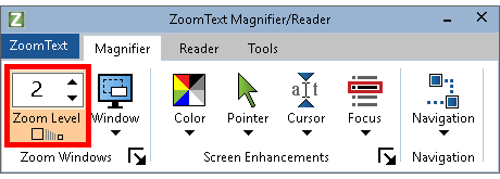 Zoom Level box shown on the Magnification tab